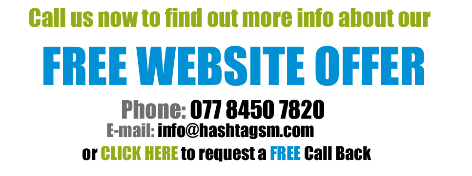 Free website consultation